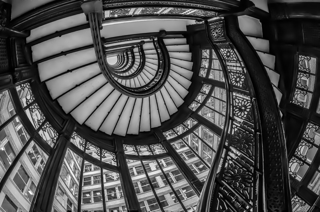 Rookery Stairwell by jyokota