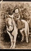 28th Apr 2017 - Ride 'em cowboy!