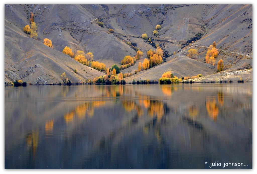 Autumn at Benmore..   by julzmaioro