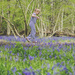 Day 120, Year 5 - Bluebell LouBell by stevecameras