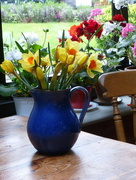 27th Apr 2017 - Spring flowers from the garden ...