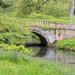 The River Cerne by dorsethelen