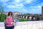 5th May 2017 - CHRISTINE!  OR IS IT THE ROMAN BRIDGE