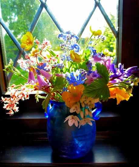 Flowers on the windowsill ... by snowy