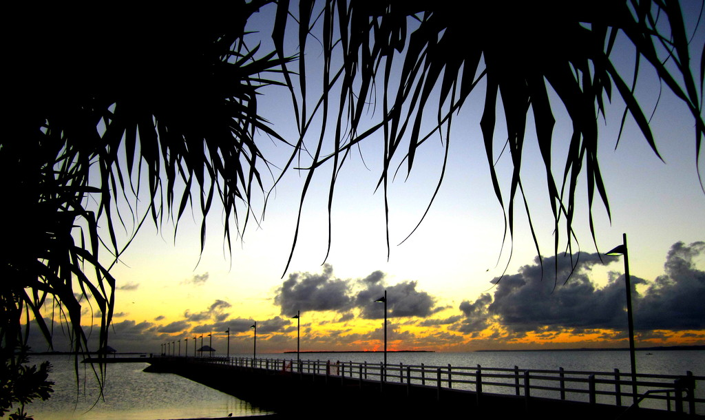 Sunrise over Wynnum Jetty Brisbane by 777margo