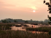 5th May 2017 - Another dawn over the reedbeds