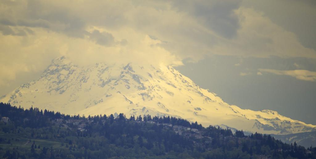 Mount Rainier View by nanderson