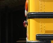 7th May 2017 - School bus half and half