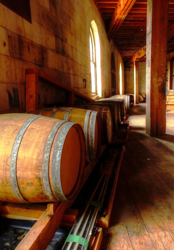 A barrel of fun by maggiemae