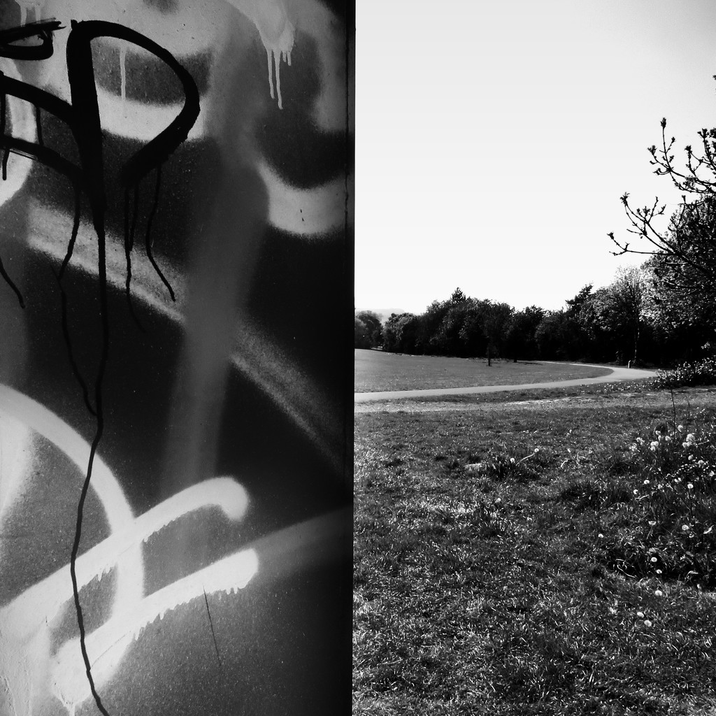 Graffiti in the park by m2016