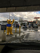 8th May 2017 - Thank You for the Car Wash