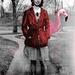 Mary Had a Pet Flamingo