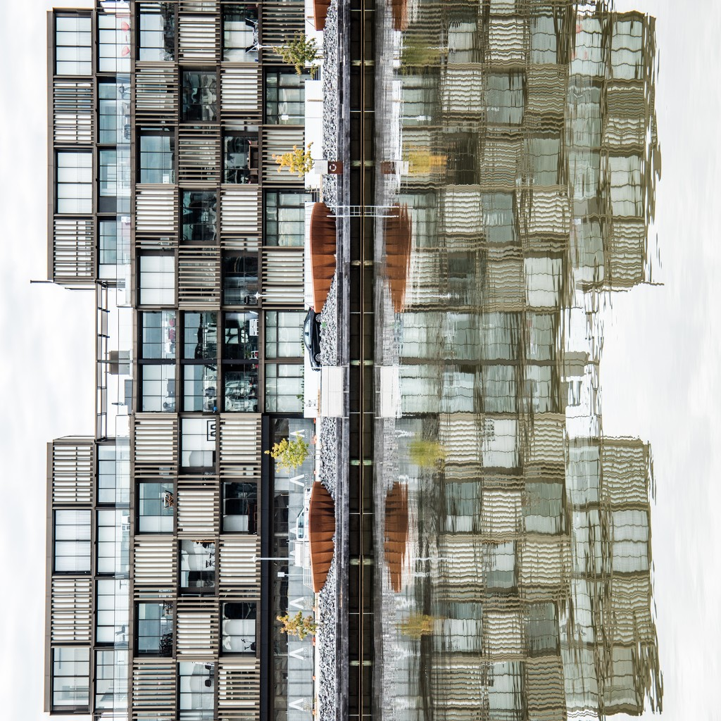 Half and Half Apartment Living Reflection by nicolecampbell