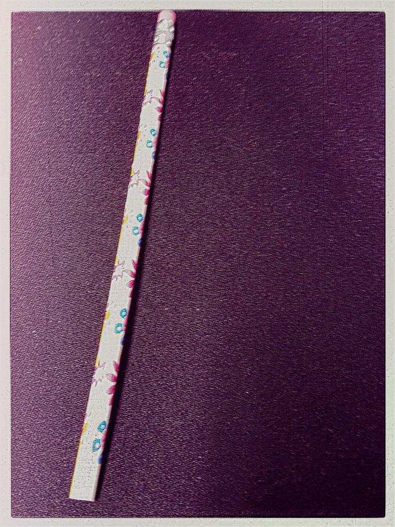 Mundane Pencil  by kathyboyles