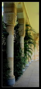16th May 2017 - Majestic columns at Queensland University