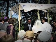14th May 2017 - Under the Wedding Canopy
