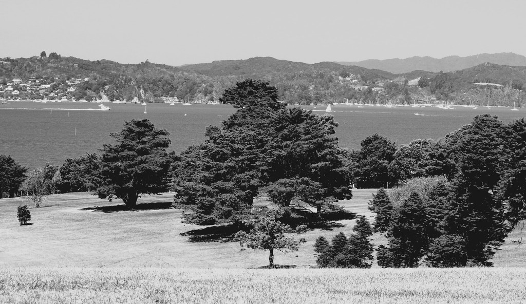 Taken from Waitangi grounds looking across to Russell Bay of Islands by Dawn