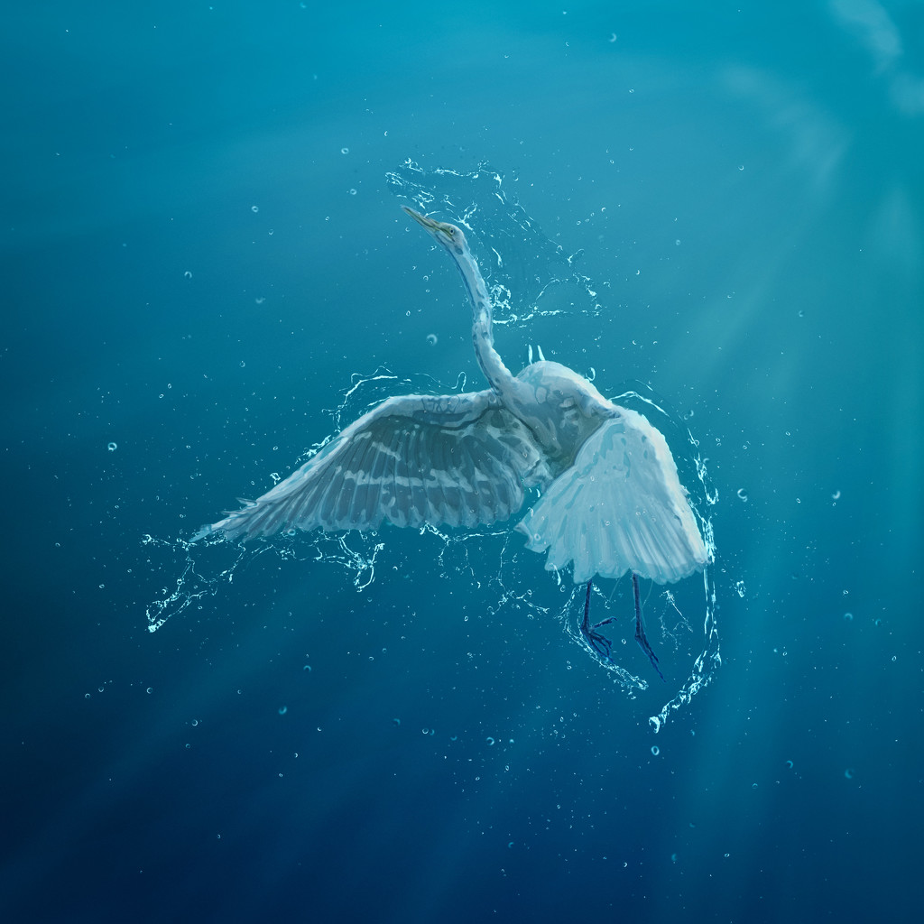 Egret Abstract by mikegifford