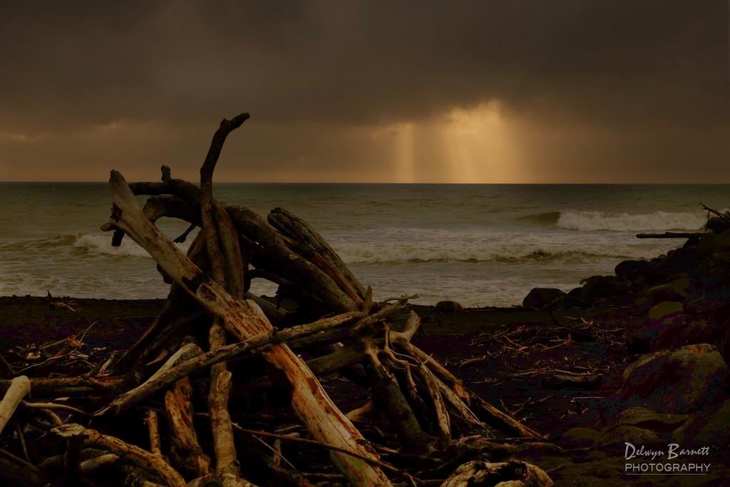 Driftwood castle by dkbarnett