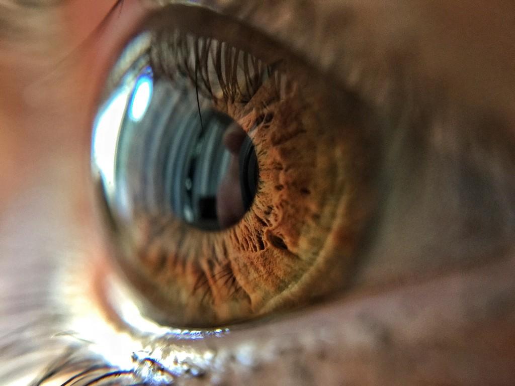 Macro eye.  by cocobella