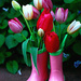 Rainboots and Tulips by gq