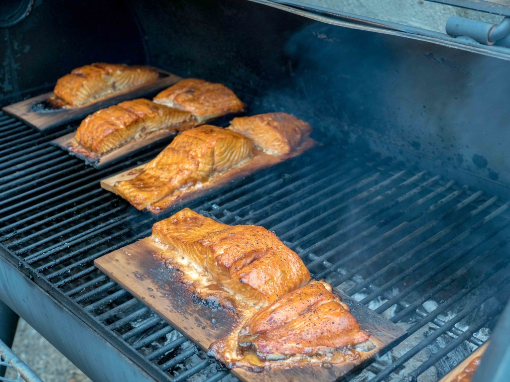 Grilled Salmon by rminer