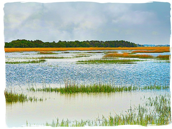 Marsh View on Edisto Island, SC by peggysirk
