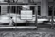 26th May 2017 - Bus Stop