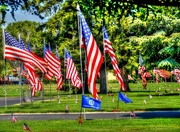 27th May 2017 - Parade of Flags at the Cemetery