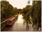 31st May 2017 - Evening On The Canal
