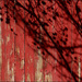 red fence and shadow