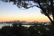 24th May 2017 - Sydney