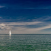 Green Water, Blue Sky, White Sailboat by taffy