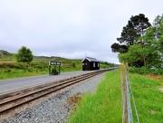 4th Jun 2017 - The Welsh Highland Railway at Rhyd Ddu