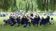 4th Jun 2017 - Music in the park