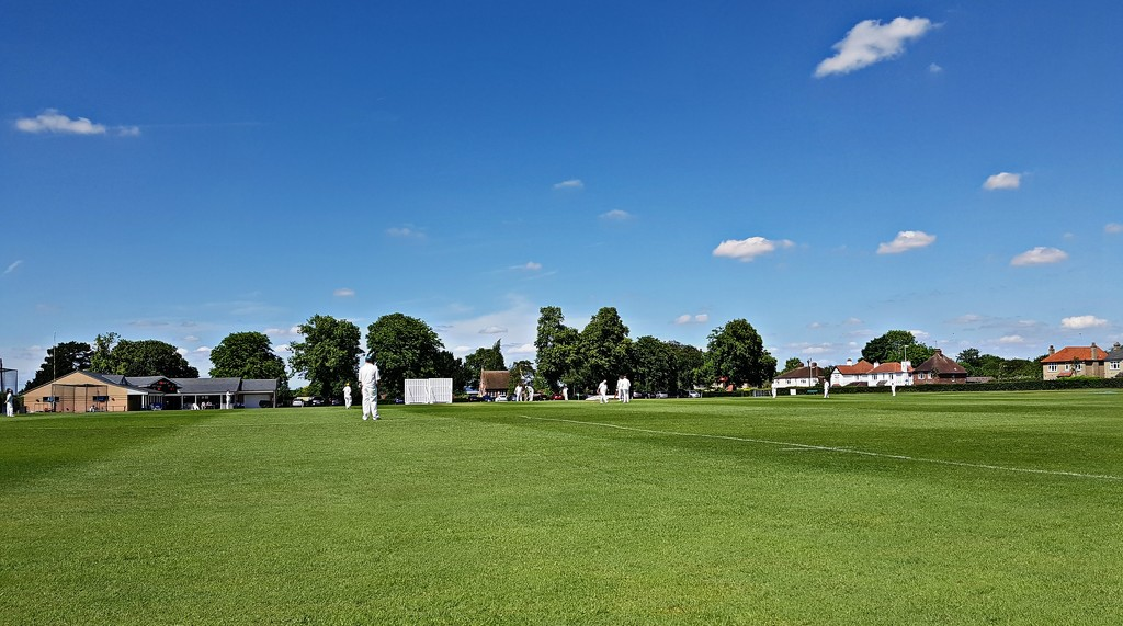Saturday afternoon Cricket by kimcrisp