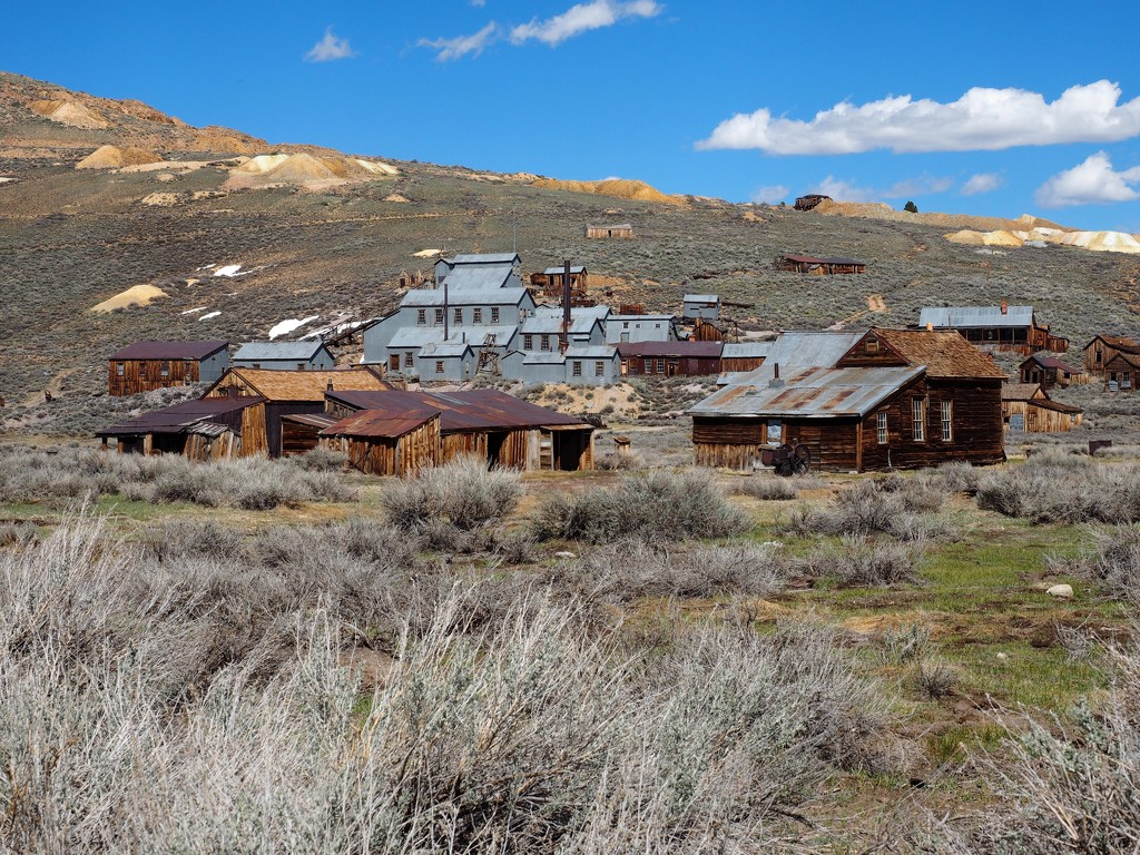 Gold Rush Boomtown by redy4et