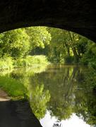 6th Jun 2017 - A walk along the canal tow path...