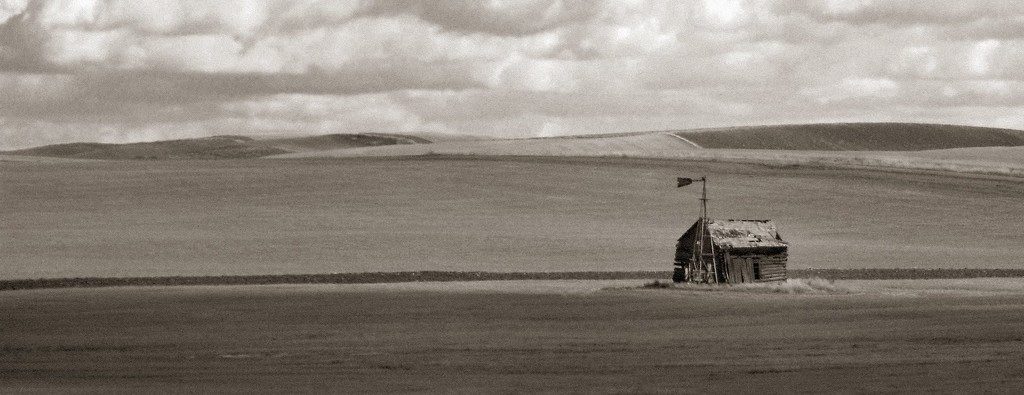 Old Barn on the Palouse by lsquared