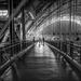 Visiting The Hangar by rosiekerr