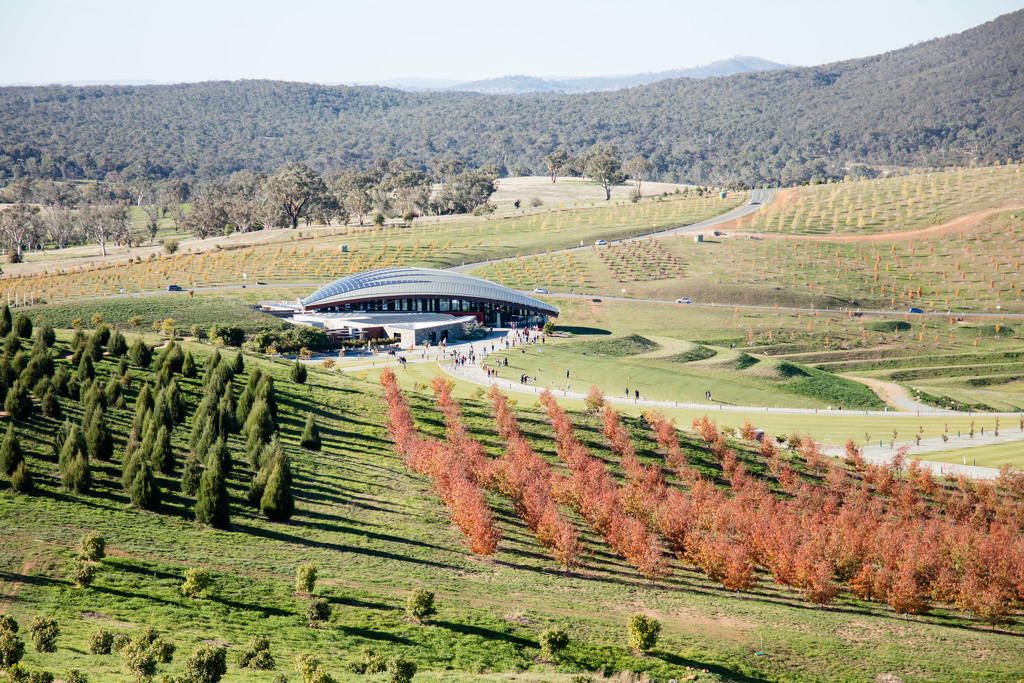 National Arboretum Canberra 2  by nicolecampbell