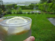 10th Jun 2017 - 30 Days Wild - Day 10 - Outdoor drink in the rain