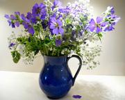 10th Jun 2017 - Blue flowers in a blue jug...