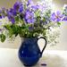 Blue flowers in a blue jug... by snowy