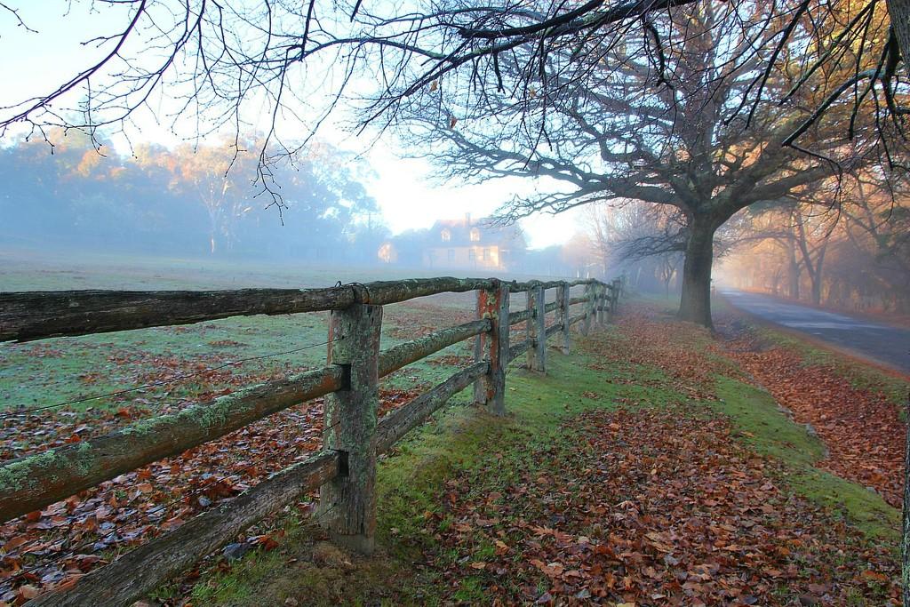 Fence in the fog by leggzy