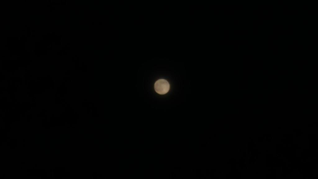 Full moon by petaqui