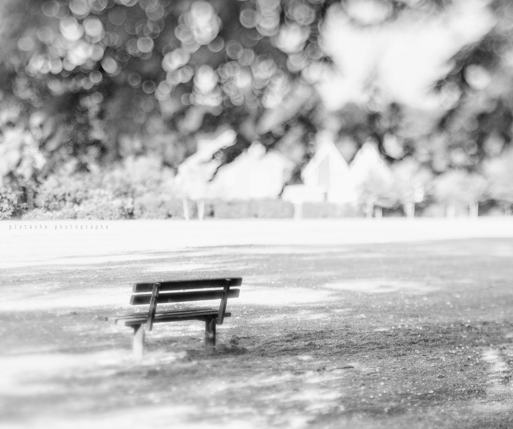 in the park by pistache
