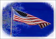 14th Jun 2017 - Flag Day 2017