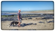 17th Jun 2017 - My hubby and Sadie as we stroll along the beach at Rhosneigr