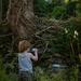 'Tall oaks from little acorns grow'